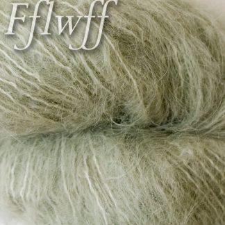 Fflwff (Suri Alpaca)
