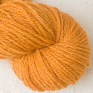 Anemone - Apricot orange Corriedale heavy DK/worsted weight yarn. Hand-dyed by Triskelion Studio.